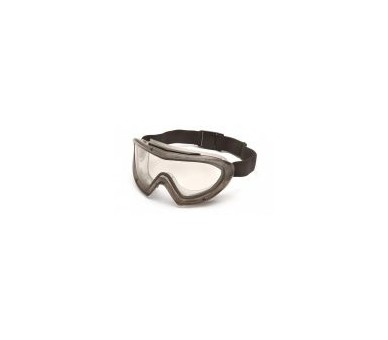 Capstone EGG504T, goggles, gray frame, clear lens, non-fogging