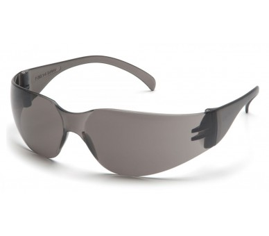 Intruder ES4120S, gafas de seguridad, gris