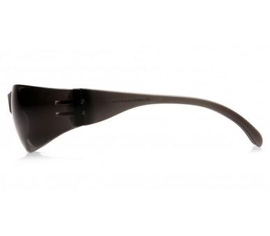 Intruder ES4120S, Schutzbrille, grau